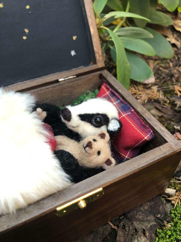 borsuk zabawka w pudełku
