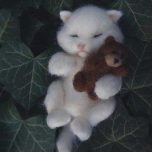 kurs śpiący kotek
